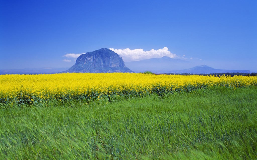 Sanbang Mountain on Jeju Island (image: Flickr,by miquitos)