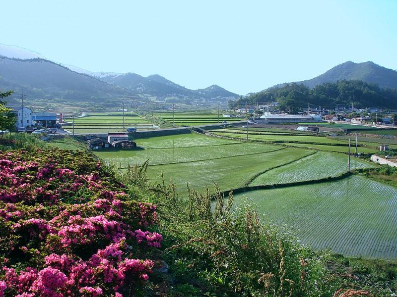 N. Gyeongsang Province to Kick Off 'Healing-Work' Program