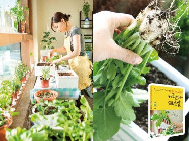 More Koreans Growing their Own Greens with Skyrocketing Vegetable Prices