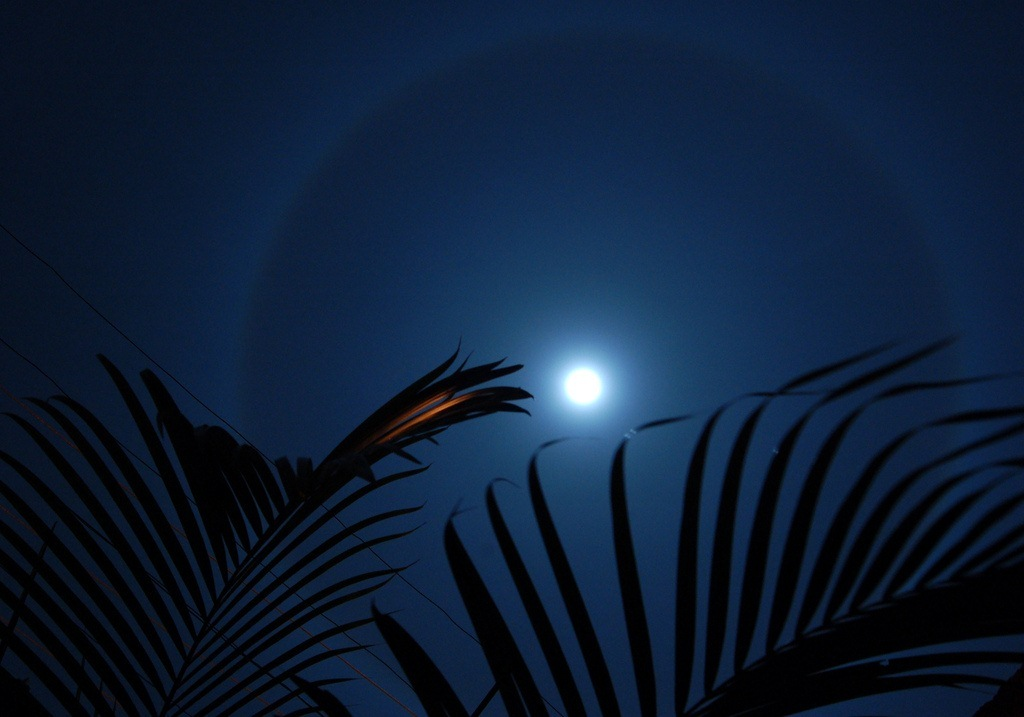 The Moon's Halo (image: by thombo2 at Flickr)