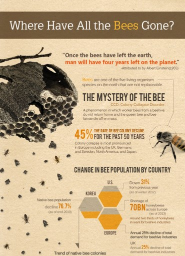 [Kobiz Infographics] Where Have All the Bees Gone?