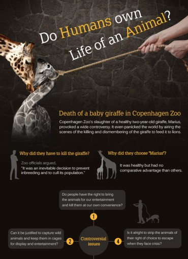 [Kobiz Infographics] Do Humans own Life of an Animal?