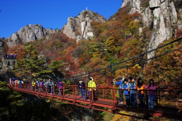 21 National Parks Host 47 Mil. Visitors Last Year