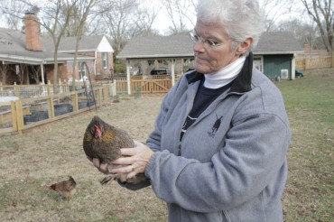 Chick Days Powers Backyard Farmers, Self-Reliance Movement