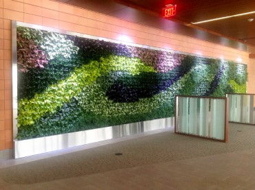 GSky's New Green Wall at Major Medical Provider Transforms Lobby into Relaxing Oasis for Patients