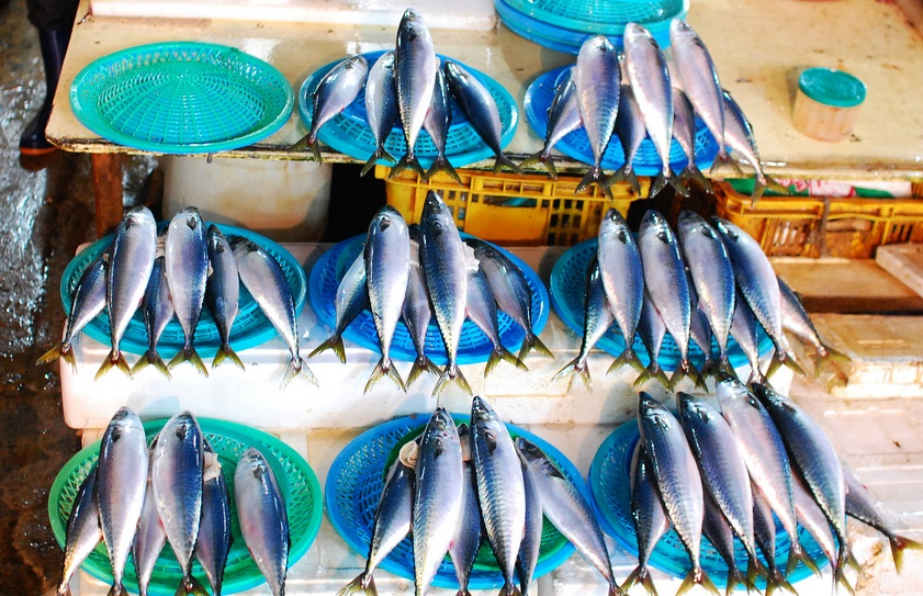 All they need is type in the serial number on the package of mackerel or scan the barcode to see who caught it, when, and where it was processed. (image: Justin Ornellas/flickr)