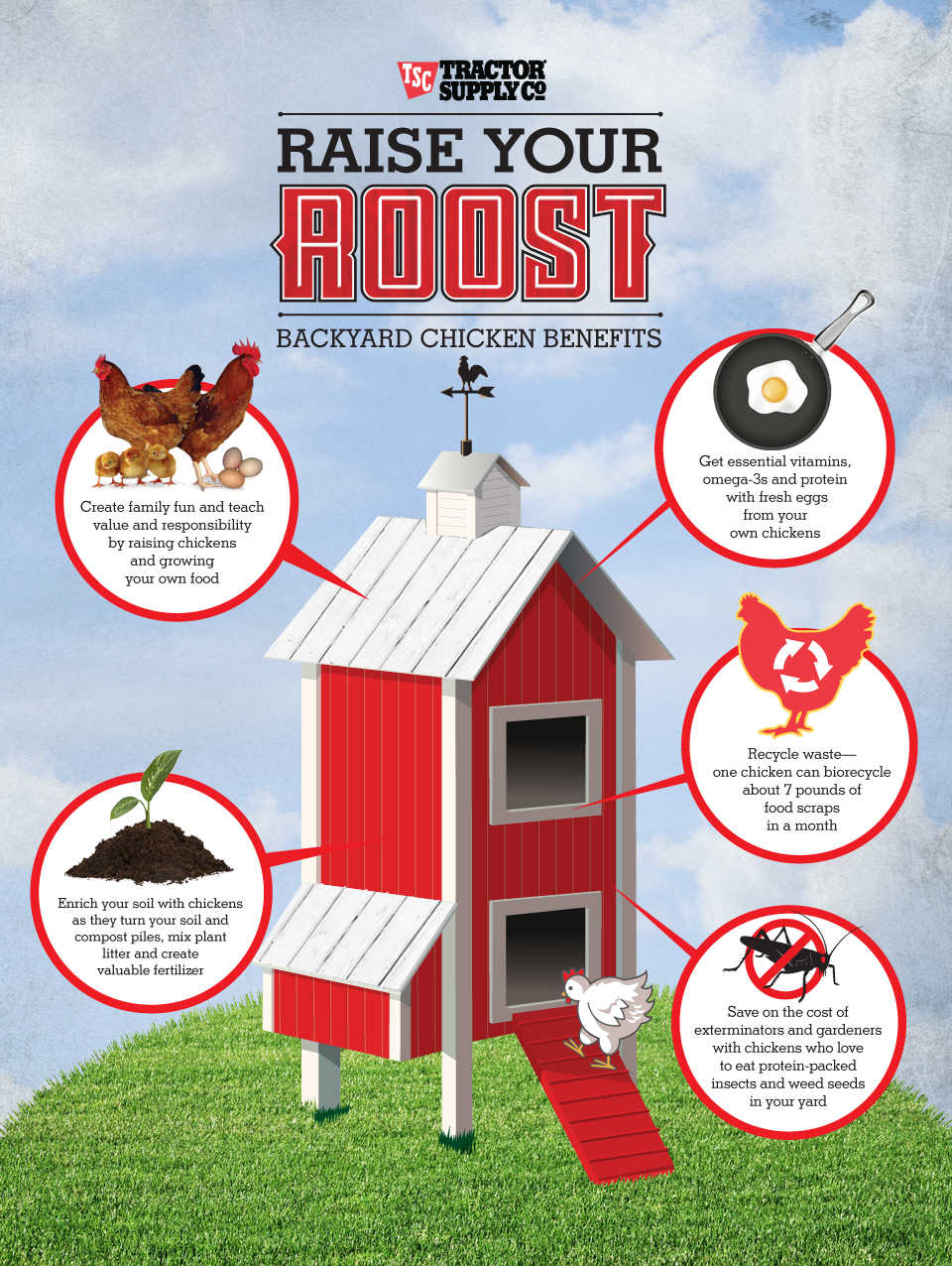 Raising chickens is fun for your family and beneficial for your yard and garden. (image: Business Wire)