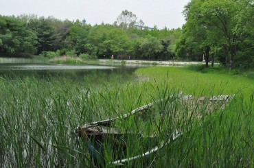 "Seoul City Holds ""BioBlitz Korea"" Jointly with Korea Forest Service and National Arboretum"