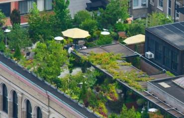 The Garden Project Kicks off First Pilot Program in Korea
