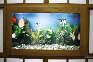 """""""IT Aquarium"""" Installed in Korea's Subway Station"""