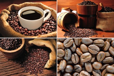 "Large-scale ""Coffee Theme Park"" to Be Built in Chuncheon, Gangwon Province"