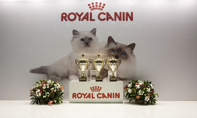 Royal Canin will produce high value-added functional pet food in the facility covering a 98,021 square meter site. (image: Nickolas Titkov/flickr)