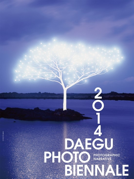 A promotional poster image  for 2014 Daegu Photo Biennale
