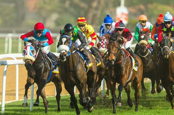 Korea's Horse Racing Goes to Western Europe