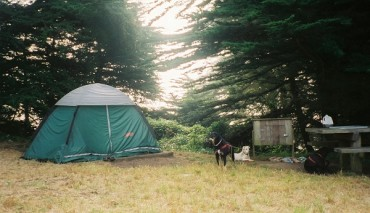 Best Campgrounds in Korea to Receive 4 Stars