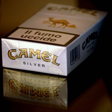 Dunhill and Camel to Be Sold at Current Price Even after New Year's Day
