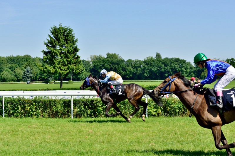 Korean Horse Racing to be Aired in Europe, Singapore