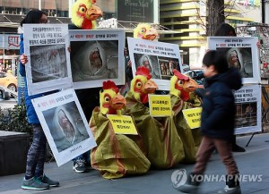 Members of the Korea Association for Animal Protection stage a performance asking for a halt to bird culling measures at exit 9 of Hongik Univ. subway station on January 11. They asked the government to stop burying the animals alive, and to consider their welfare.(image: Yonhap)
