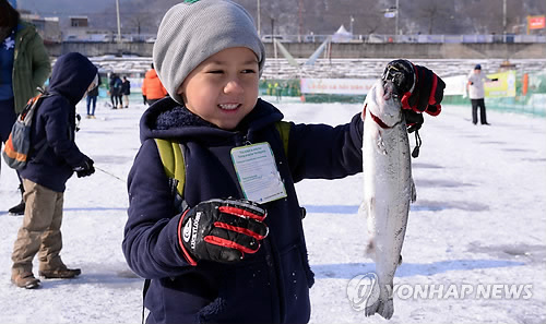 Hwacheon Trout Festival Draws Record Number of Visitors