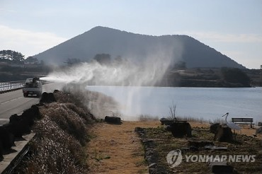 Highly Pathogenic Avian Flu Found in Jeju