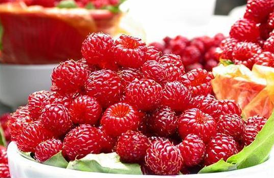 Raspberry Wine 'Sun Wun' APEC 2005′s Official Dinner Drink