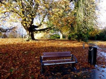 """Dead Leaves Make Compost to Realize """"Green Farming"""""""