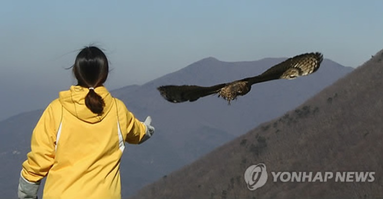 Go back to the nature! (image courtesy of Yonhap)