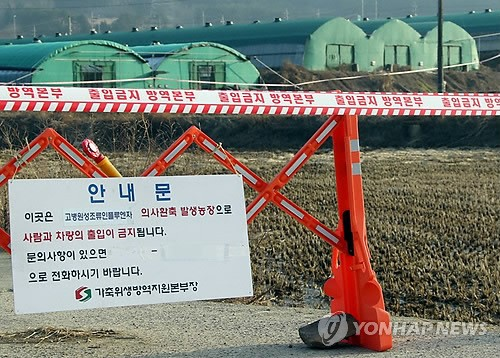 S. Korea Confirms Avian Influenza in Dog at Affected Farm