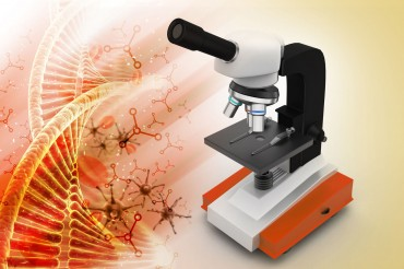 Korean Researchers Develop Optical Microscope That Detects Cell Nucleus Changes