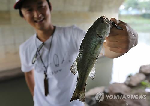 Daegu to Compensate Invasive Species Hunters with Reward Money
