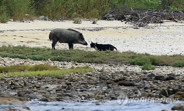 Inje to Operate Wildlife Seizing Force to Prevent Agricultural Damage