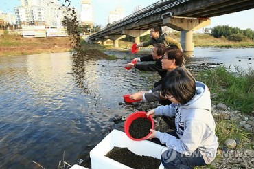 180,000 King Crab Younglings to Be Released into Reservoirs in Jeonbuk