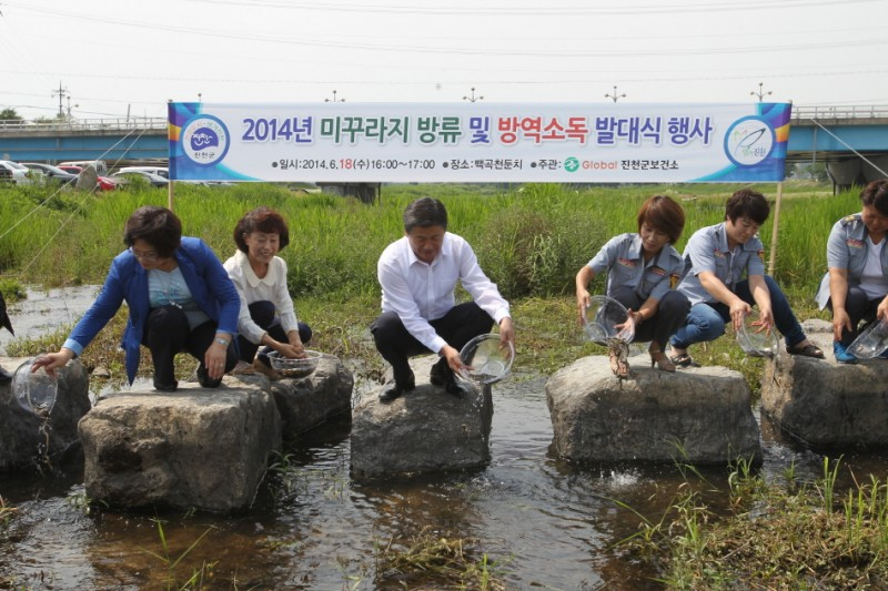 County in Korea Eradicating Mosquitoes with their Natural Enemy, Loaches