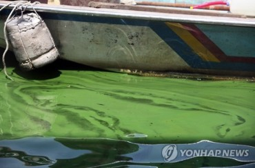 Drought Drives Algal Bloom around Korea, Stranding Fish in Han River