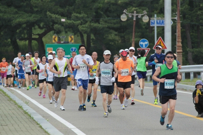 Run Along the Coast at Yeongdeok Lohas Marathon