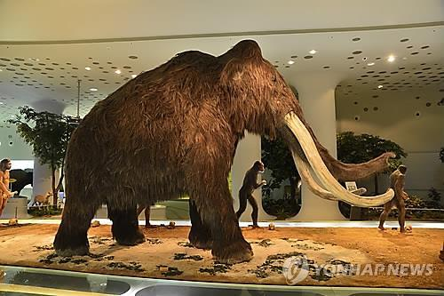 Korean Scientists in Legal Wrangle over Mammoth Cloning Technology