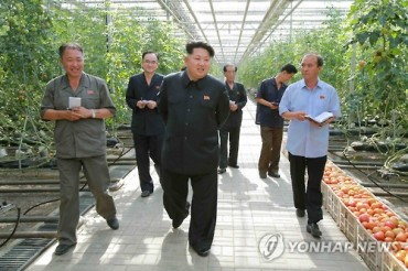Kim Jong-un Executes Man over Starving Turtles as North Koreans Go Hungry