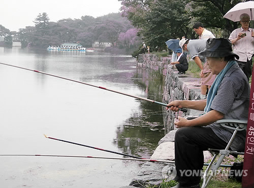 Fishing at Uirimji. (2012) (Image : Yonhap)