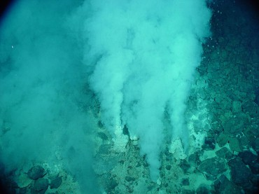 Korean Researchers Find Hydrothermal Vents, New Species at Antarctic Oceanic Ridge