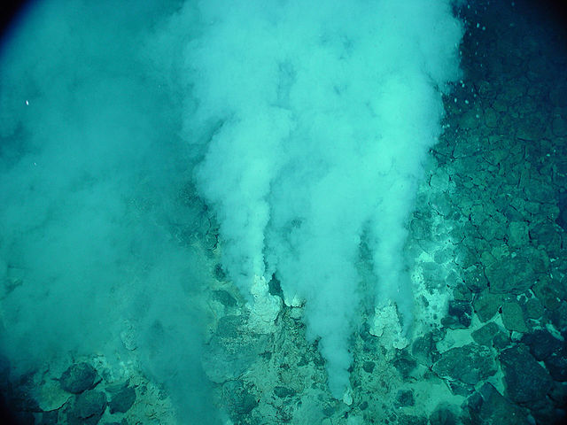 Hydrothermal vents in the oceanic ridge provide energy to the deep sea, where solar energy cannot penetrate, and form hydrothermal ecological systems. (image: NOAA/Wikimedia)