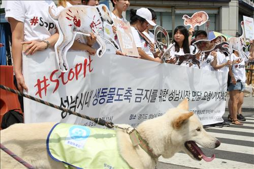 Animal Protection Group Rallies against Dog Meat Consumption