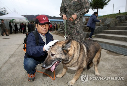 Twenty-two military dogs that used to play an active role in army operations have started new lives as pets after their retirement. (Image : Yonhap)