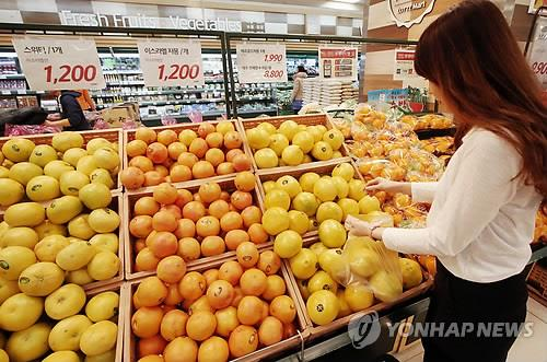 Domestic demand for grapefruits also increased, pushing imports up from 17,000 tons to 22,000 tons (28.5 percent). (Image : Yonhap)