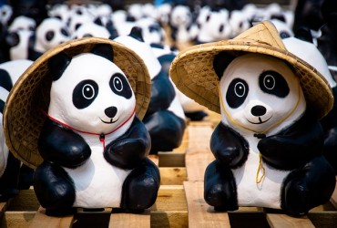 Panda Couple to Start a New Life in Everland