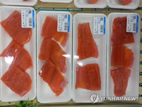 Salmon, which was recently farmed for the first time in Korea, is gaining popularity in the market. (Image : Yonhap)