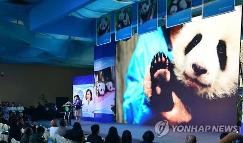 Panda Pair to Arrive at Samsung Everland Next Month
