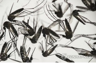 All Suspected Zika Virus Cases Test Negative