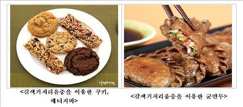 Insects are also considered to be an eco-friendly food source. (Image : Yonhap)