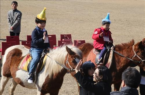The eight new students at Siheung Elementary school in Seogwipo entered school riding horses. The children took a tour of their school on horseback. (Image : Yonhap)