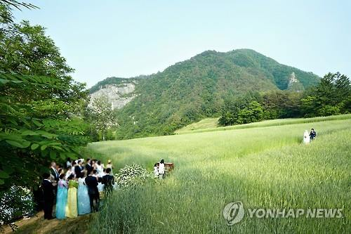 Actor Won Bin and actress Lee Na-young are pictured during their wedding ceremony at a trail in a wheat field in Jeongseon, Gangwon Province, on May 30, 2015, in this photo released on May 31 by their agency, Eden9 Entertainment Co. Only select family members and close friends were invited to the wedding. (Image : Yonhap)